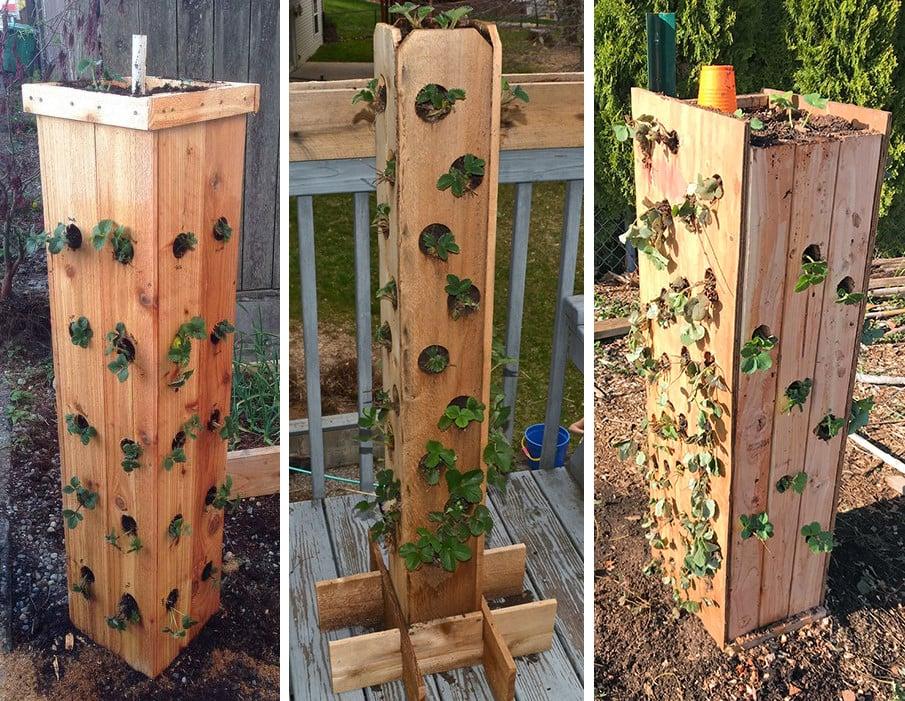 Strawberry wood tower ideas