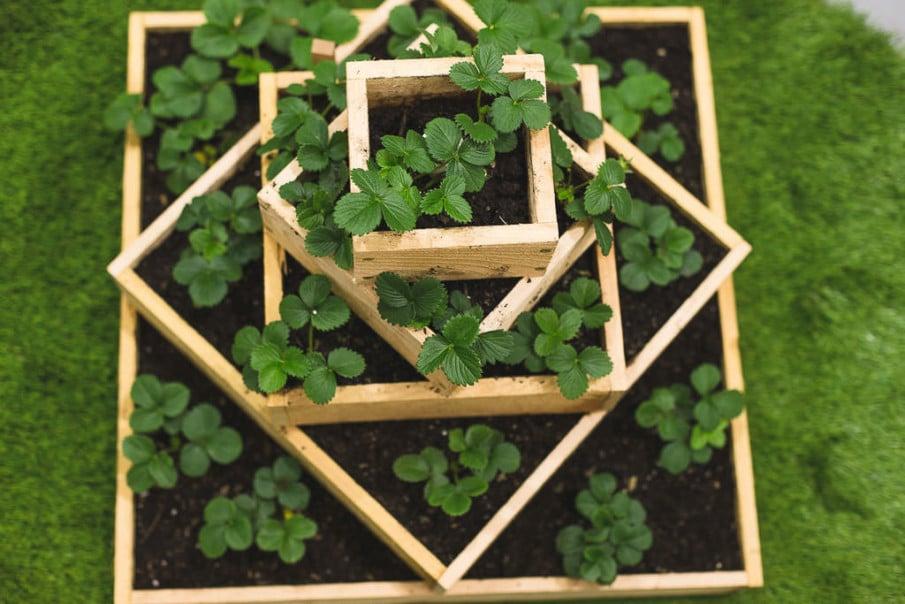 DIY tiered cedar strawberry planter plan
