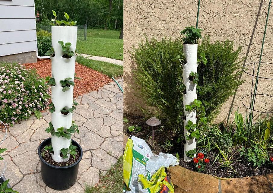 Strawberry PVC Tower Planters