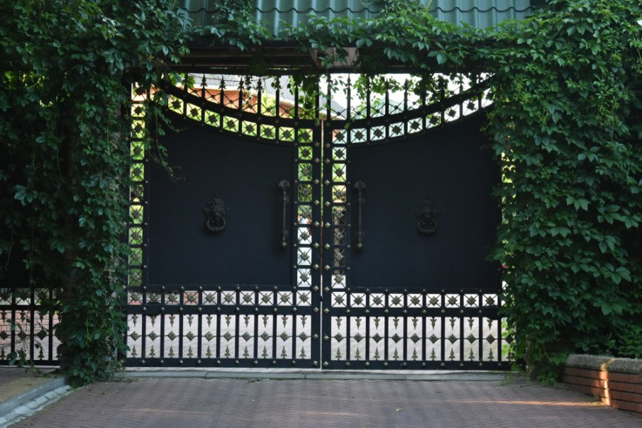 Ornamental wrought iron gate and fence covered in vines