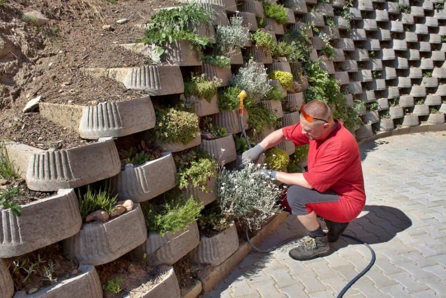 Tiered cement retaining wall allows gardener choices