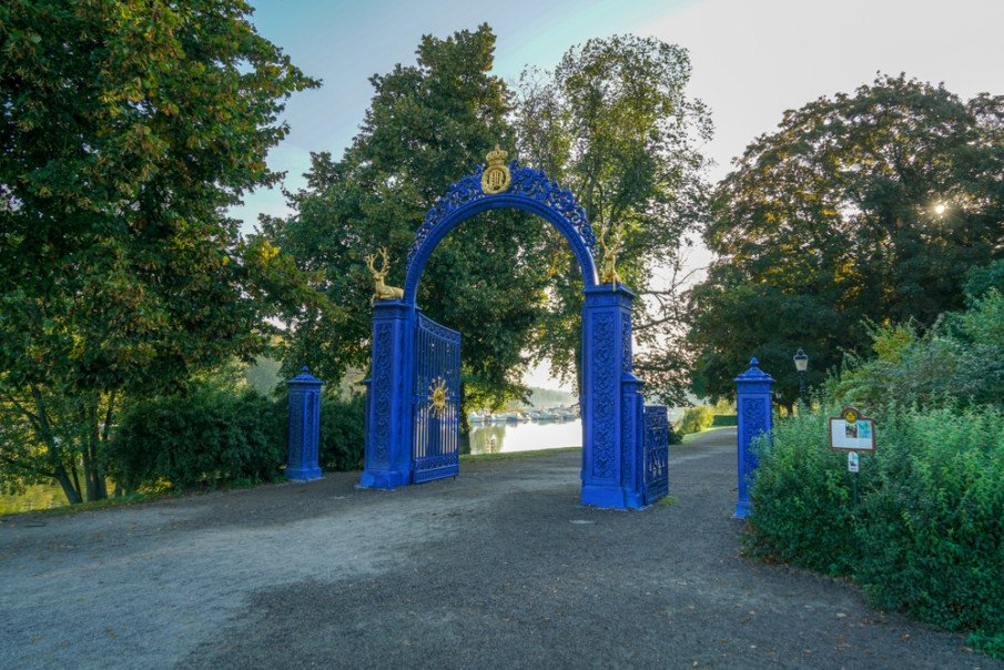 Gold and Blue iron gate design