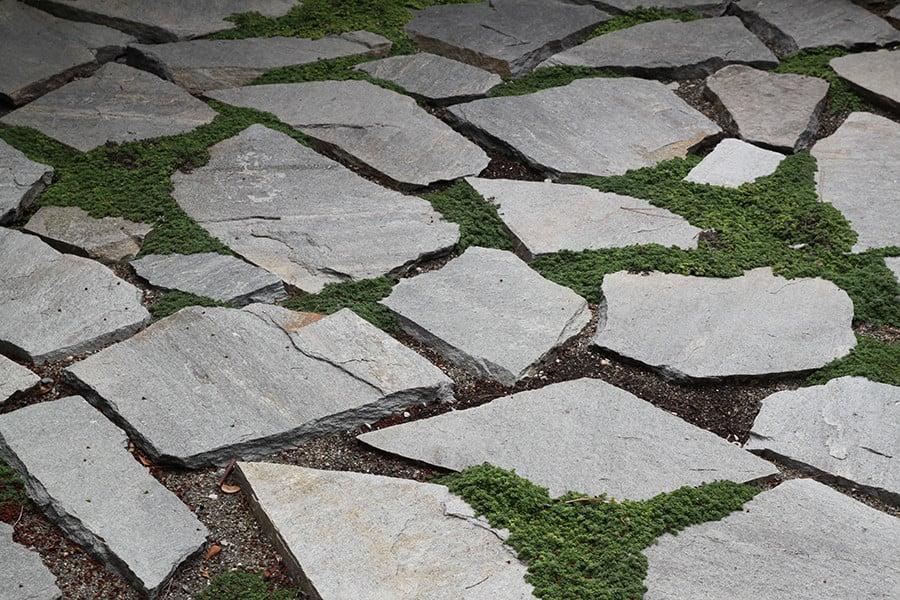 Elfin Thyme flagstone patio idea