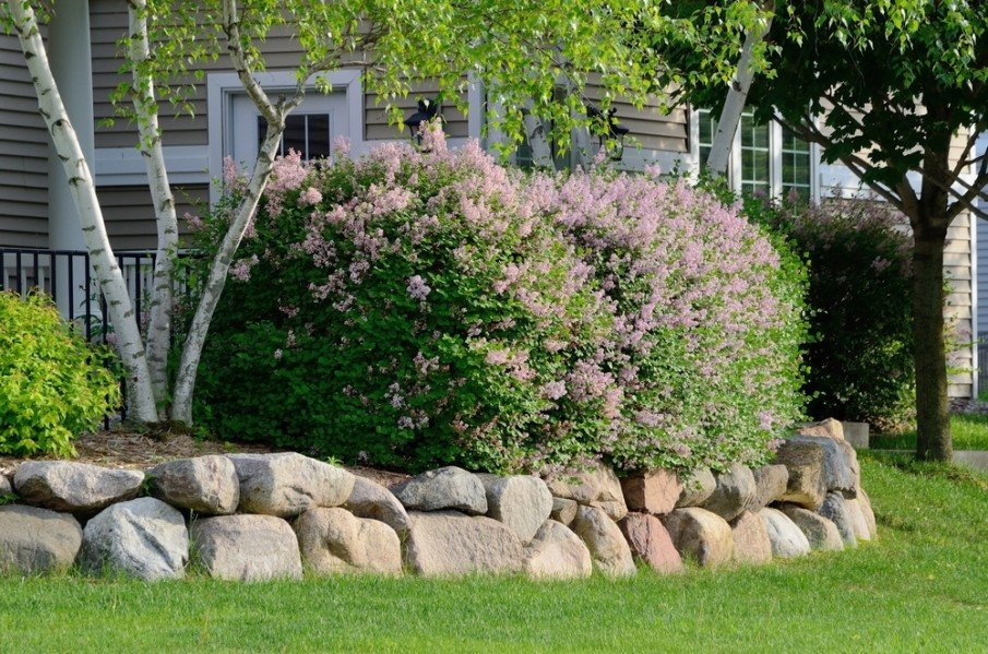 Simple retaining wall of medium-sized boulders