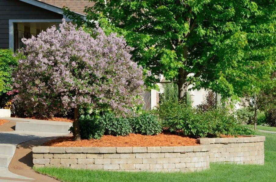 Short white brick wall in a residential garden