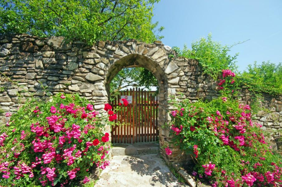 An entrance into enchanted world