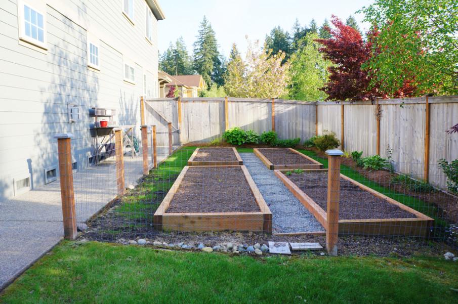 Fence idea around the raised beds
