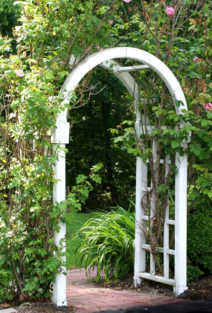Garden arbor without a gate ideas