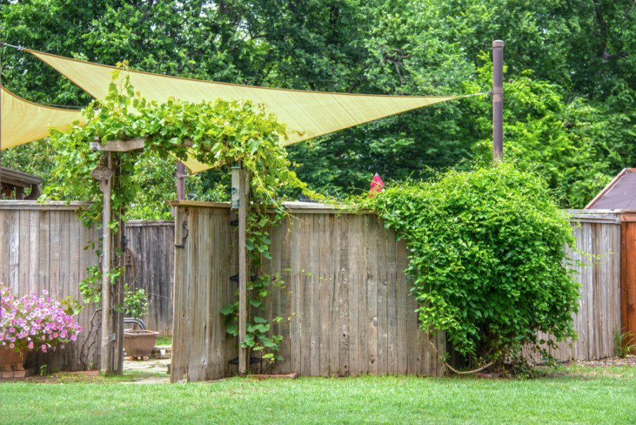 Old rustic fence with an arbor