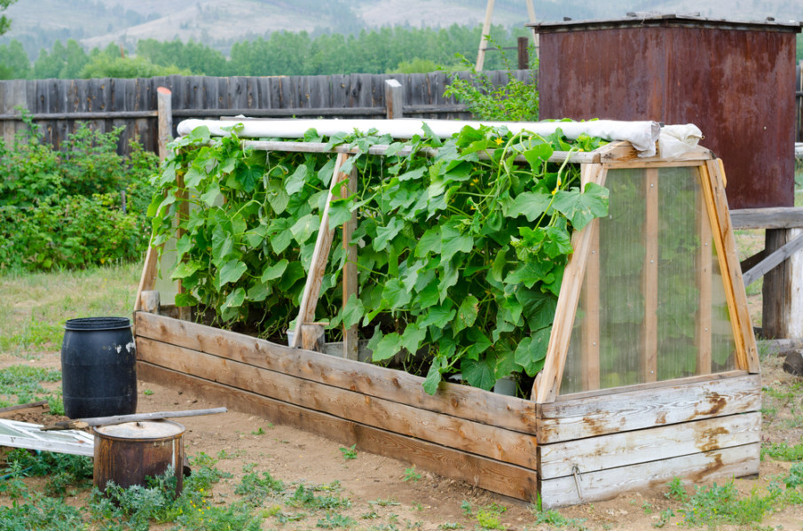 Raised garden bed with a greenhouse top ideas