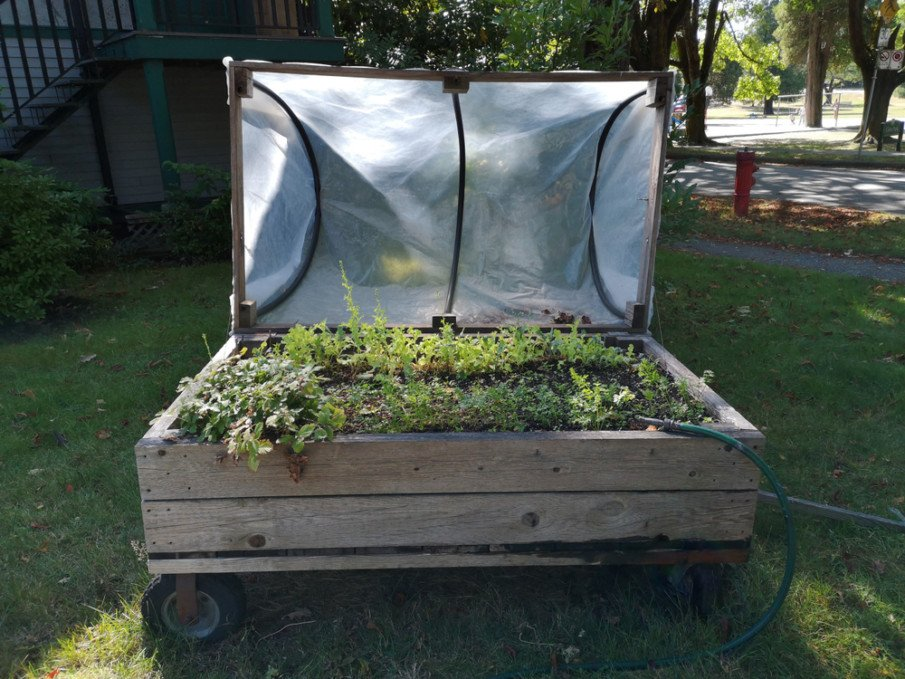 Small raised bed on wheels