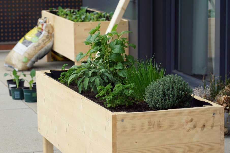 Small raised garden bed placed on tall legs