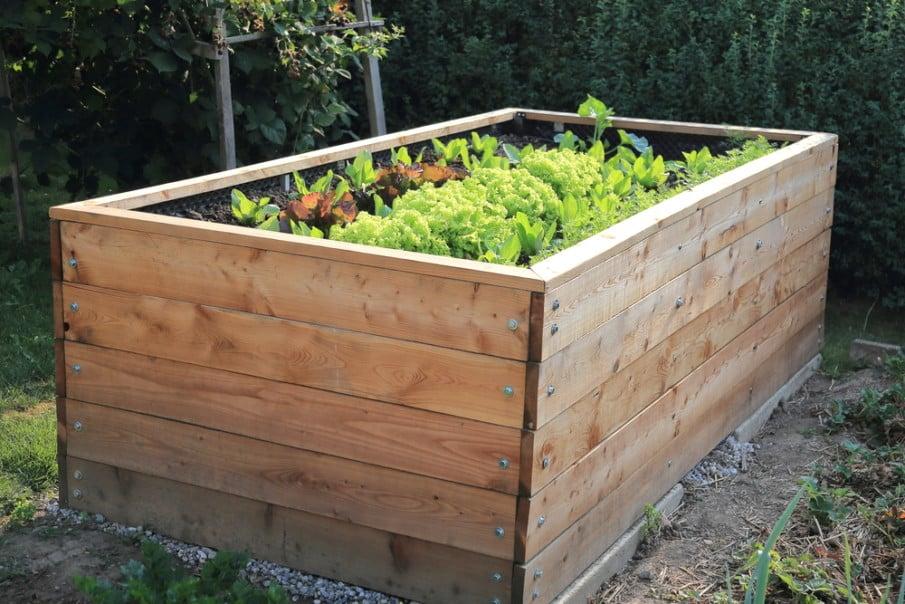 Waist high raised garden bed designs