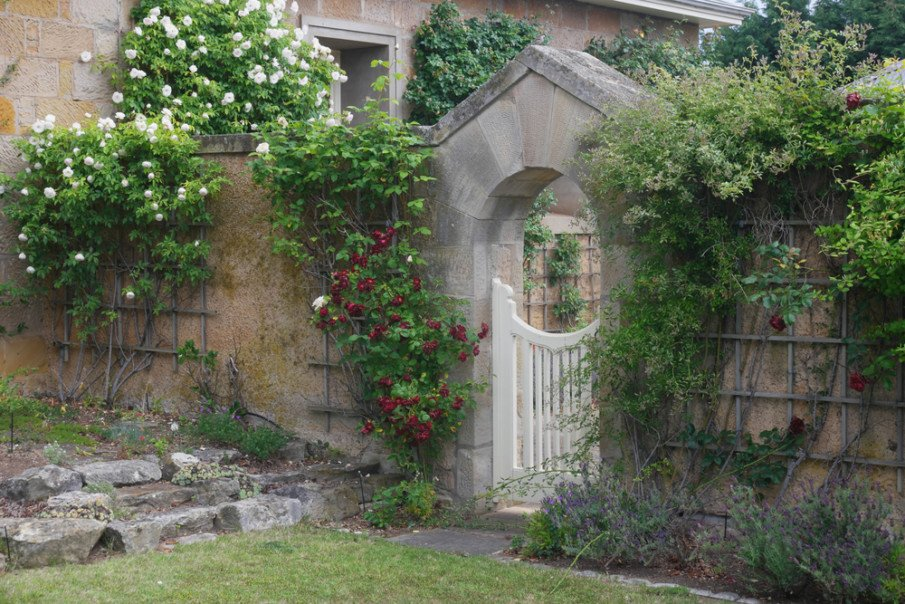 Old world stone fence with an arbor