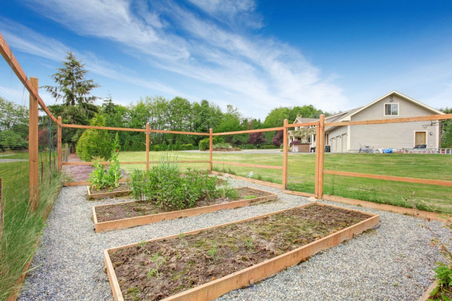 Tall fence protects garden from deer and other animals