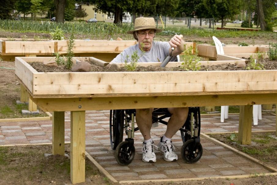 Wheelchair access gardening ideas